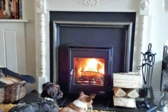 Arklow 5kw Timber surround