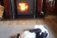 Arklow 5kw Timber surround & Emmet